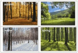 Seasons and weather – Magic pieces 3 – english