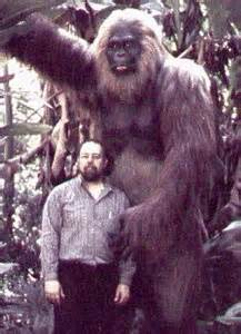 I Loved the Yeti: A so-called theory