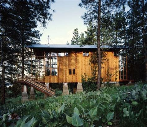 Cutler Anderson Architects Pine Forest Cabin | HOUSE